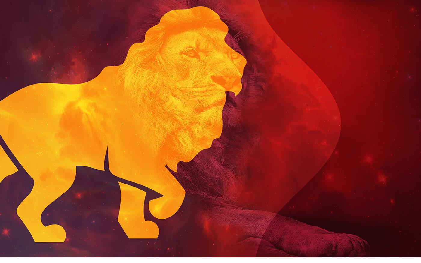 Portfolio - M&M Advogados - Branding - Símbolo do leão